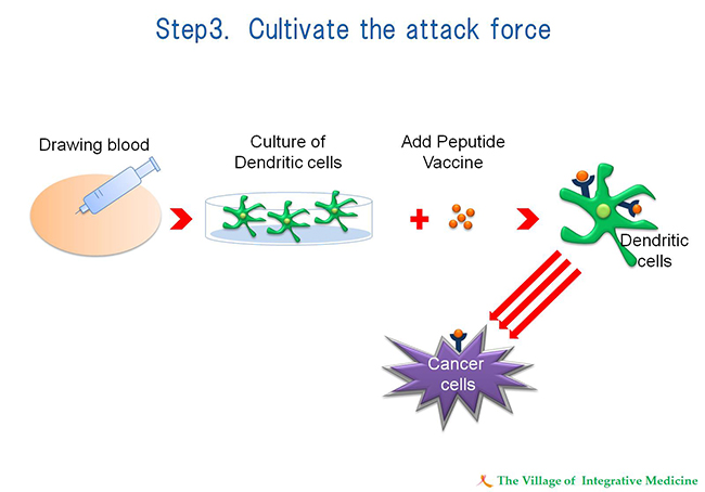 Step3 Cultivate the attack force
